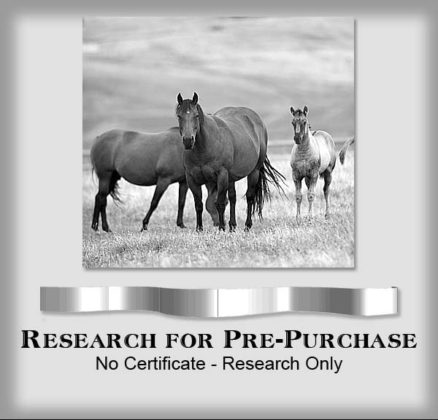 Research - Prepurchase copy
