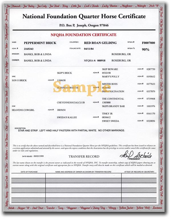 NFQHA Sample Certificate