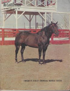 Poco Bueno - Foundation Quarter Horse article